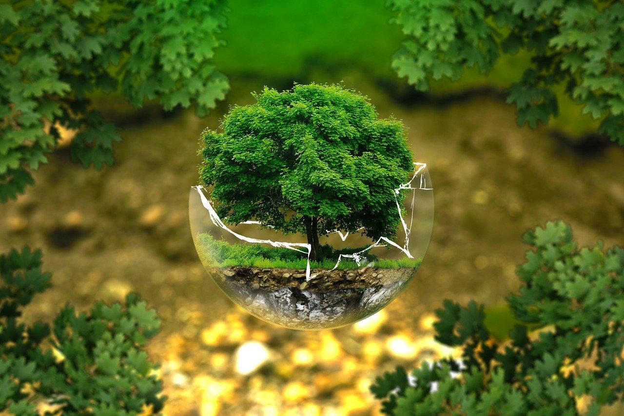 【小論文トレンドテーマ】環境問題の本質について